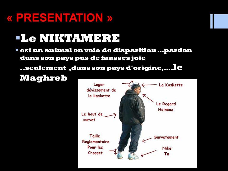 Connaissez vous ? le « niktamere » Mais qui est –il ? Voici en avant première sa description messager