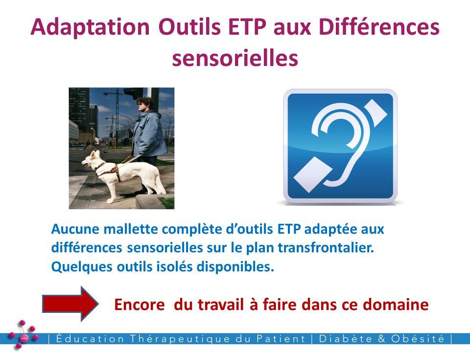 Adaptation Outils ETP aux Différences sensorielles 18 Encore du travail à faire dans ce domaine Aucune mallette complète doutils ETP adaptée aux diffé