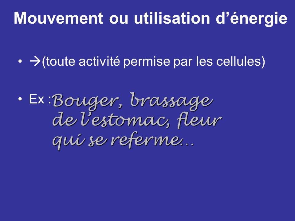 Mouvement ou utilisation dénergie (toute activité permise par les cellules) Ex : Bouger, brassage de lestomac, fleur qui se referme…