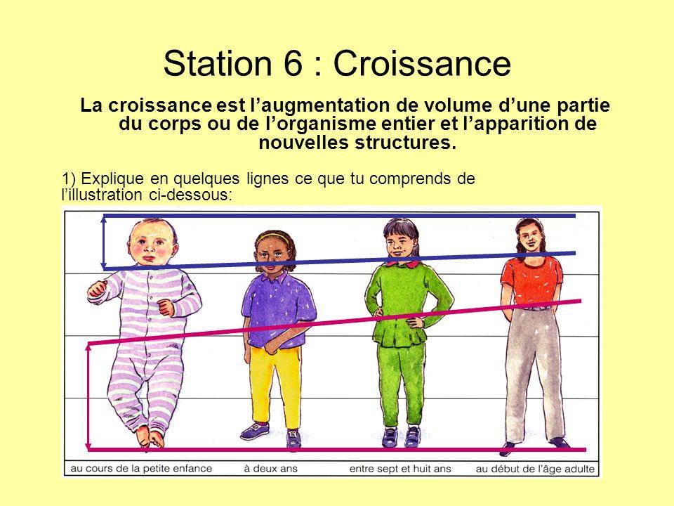 Station 6 : Croissance La croissance est laugmentation de volume dune partie du corps ou de lorganisme entier et lapparition de nouvelles structures.