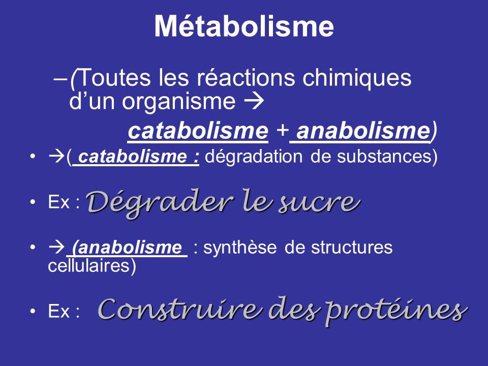Métabolisme –(Toutes les réactions chimiques dun organisme catabolisme + anabolisme) ( catabolisme : dégradation de substances) Ex : (anabolisme : syn