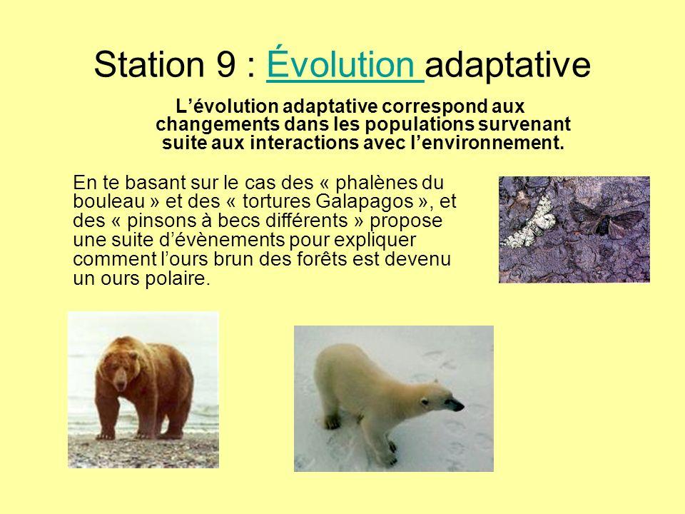 Station 9 : Évolution adaptativeÉvolution Lévolution adaptative correspond aux changements dans les populations survenant suite aux interactions avec