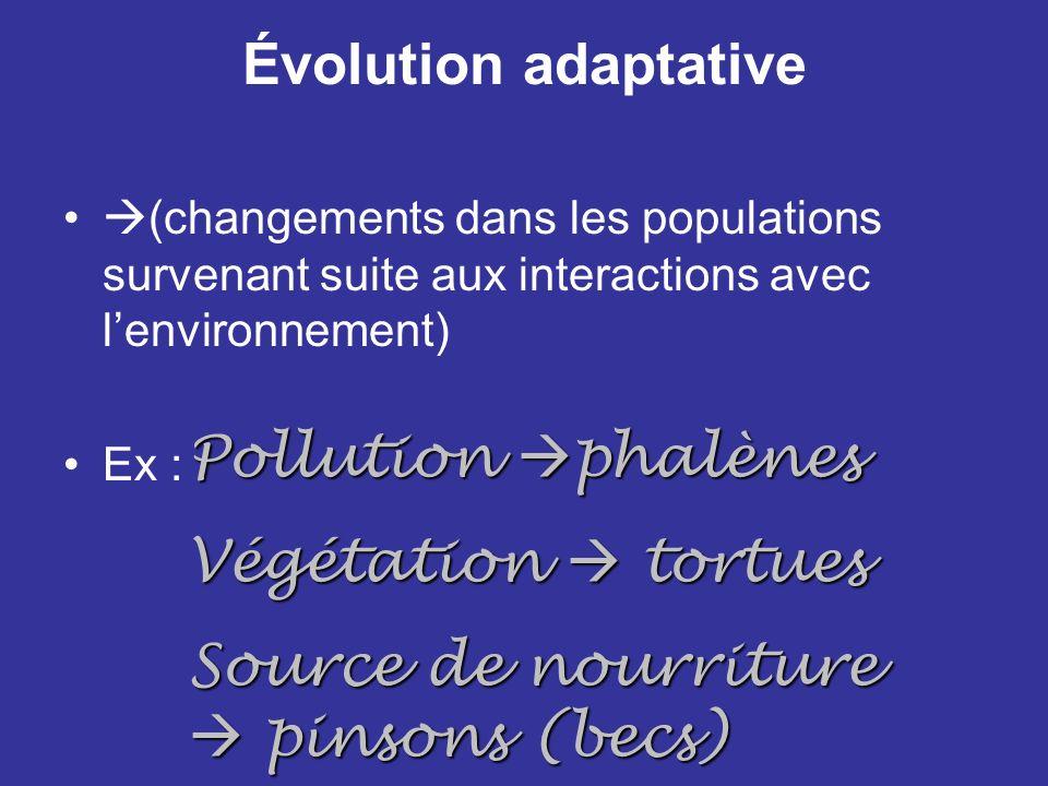 Évolution adaptative (changements dans les populations survenant suite aux interactions avec lenvironnement) Ex : Pollution phalènes Végétation tortue