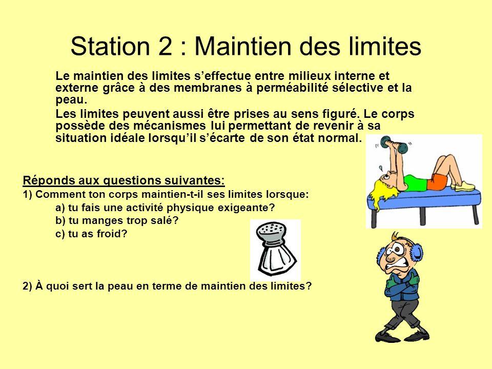 Station 2 : Maintien des limites Le maintien des limites seffectue entre milieux interne et externe grâce à des membranes à perméabilité sélective et