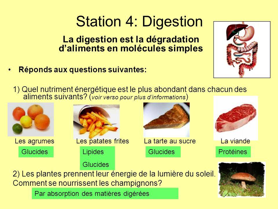 Station 4: Digestion 1) Quel nutriment énergétique est le plus abondant dans chacun des aliments suivants? ( voir verso pour plus dinformations ) La d