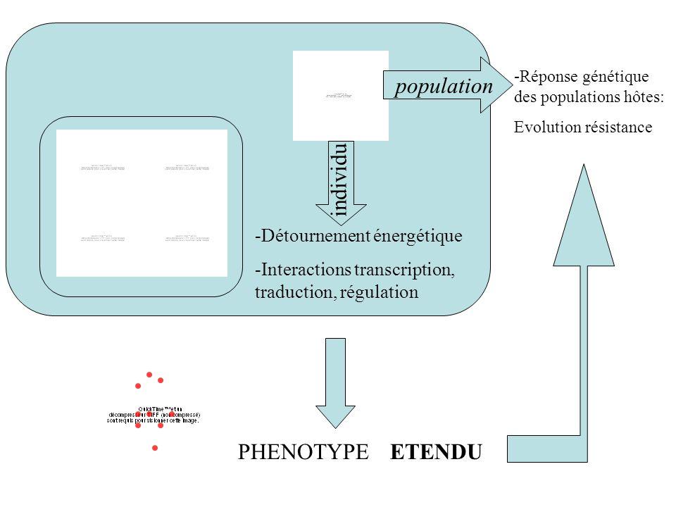 -Détournement énergétique -Interactions transcription, traduction, régulation -Réponse génétique des populations hôtes: Evolution résistance populatio