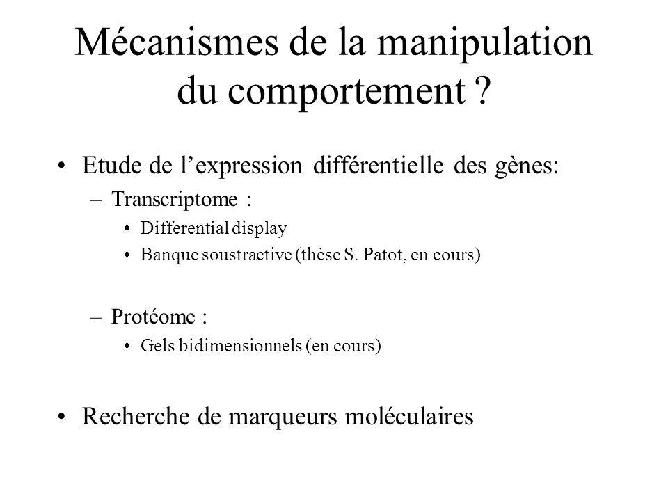 Mécanismes de la manipulation du comportement ? Etude de lexpression différentielle des gènes: –Transcriptome : Differential display Banque soustracti