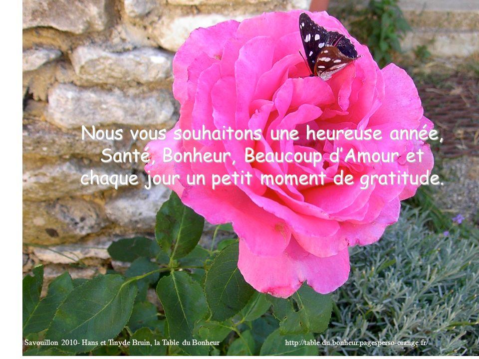 Nous vous souhaitons une heureuse année, Santé, Bonheur, Beaucoup dAmour et chaque jour un petit moment de gratitude. Fotos Savouillon 2010- Hans et T