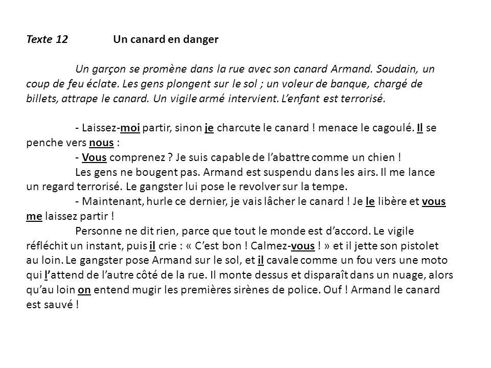 Texte 12 Un canard en danger Un garçon se promène dans la rue avec son canard Armand. Soudain, un coup de feu éclate. Les gens plongent sur le sol ; u