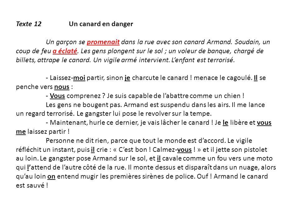 Texte 12 Un canard en danger Un garçon se promenait dans la rue avec son canard Armand. Soudain, un coup de feu a éclaté. Les gens plongent sur le sol