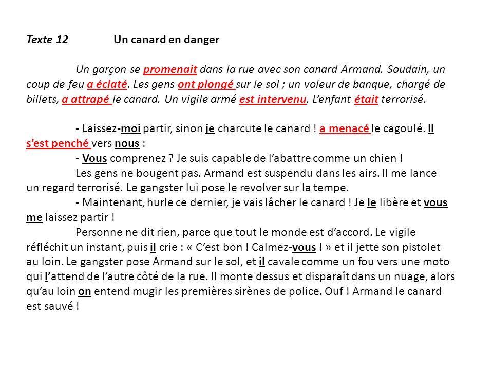 Texte 12 Un canard en danger Un garçon se promenait dans la rue avec son canard Armand. Soudain, un coup de feu a éclaté. Les gens ont plongé sur le s