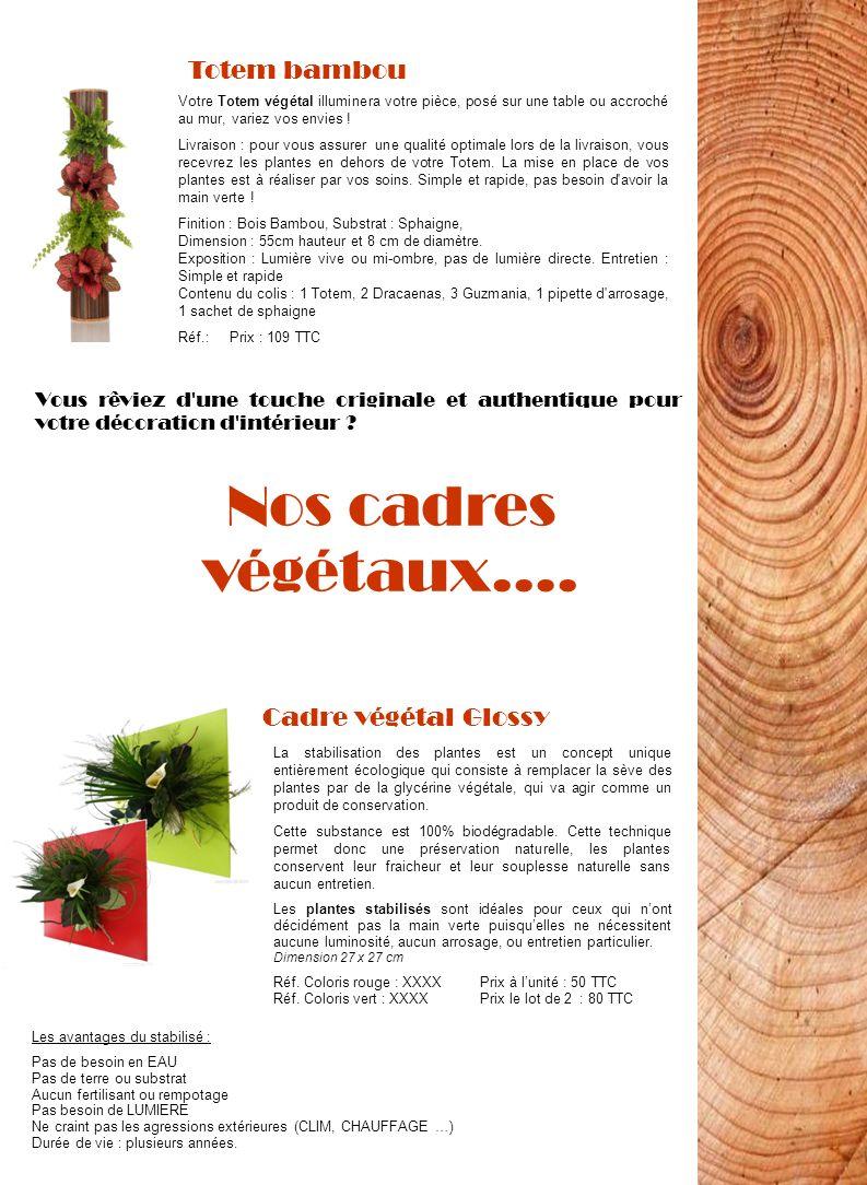Nos cadres végétaux…. Totem bambou Votre Totem végétal illuminera votre pièce, posé sur une table ou accroché au mur, variez vos envies ! Livraison :
