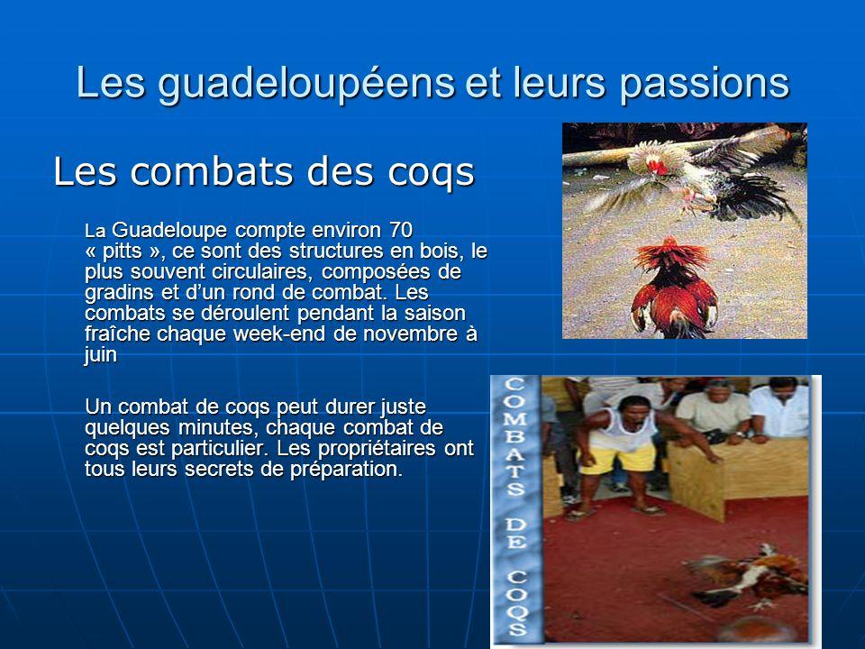 Les guadeloupéens et leurs passions Les combats des coqs La Guadeloupe compte environ 70 « pitts », ce sont des structures en bois, le plus souvent circulaires, composées de gradins et dun rond de combat.