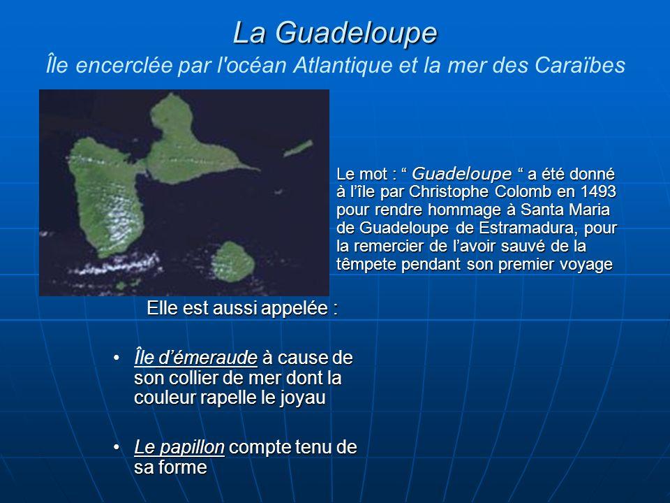 La Guadeloupe La Guadeloupe Île encerclée par l océan Atlantique et la mer des Caraïbes Elle est aussi appelée : démeraude à cause de son collier de mer dont la couleur rapelle le joyauÎle démeraude à cause de son collier de mer dont la couleur rapelle le joyau Le papillon compte tenu de sa formeLe papillon compte tenu de sa forme Le mot : Guadeloupe a été donné à lîle par Christophe Colomb en 1493 pour rendre hommage à Santa Maria de Guadeloupe de Estramadura, pour la remercier de lavoir sauvé de la têmpete pendant son premier voyage