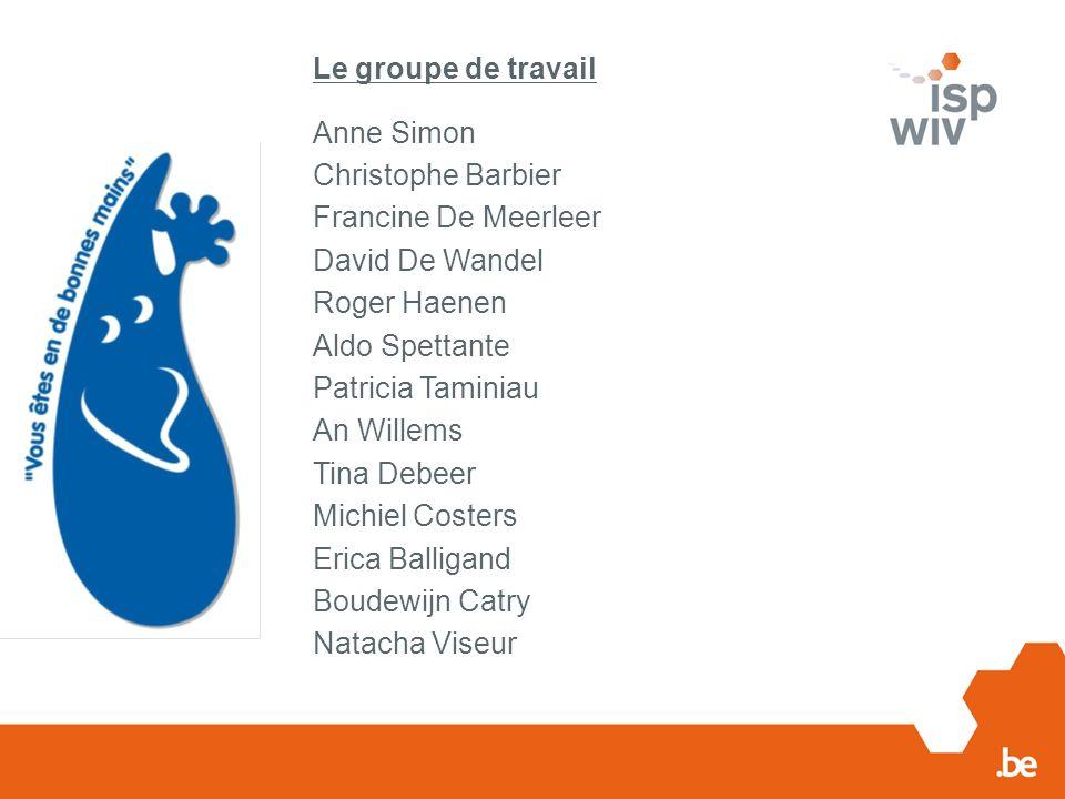 Le groupe de travail Anne Simon Christophe Barbier Francine De Meerleer David De Wandel Roger Haenen Aldo Spettante Patricia Taminiau An Willems Tina