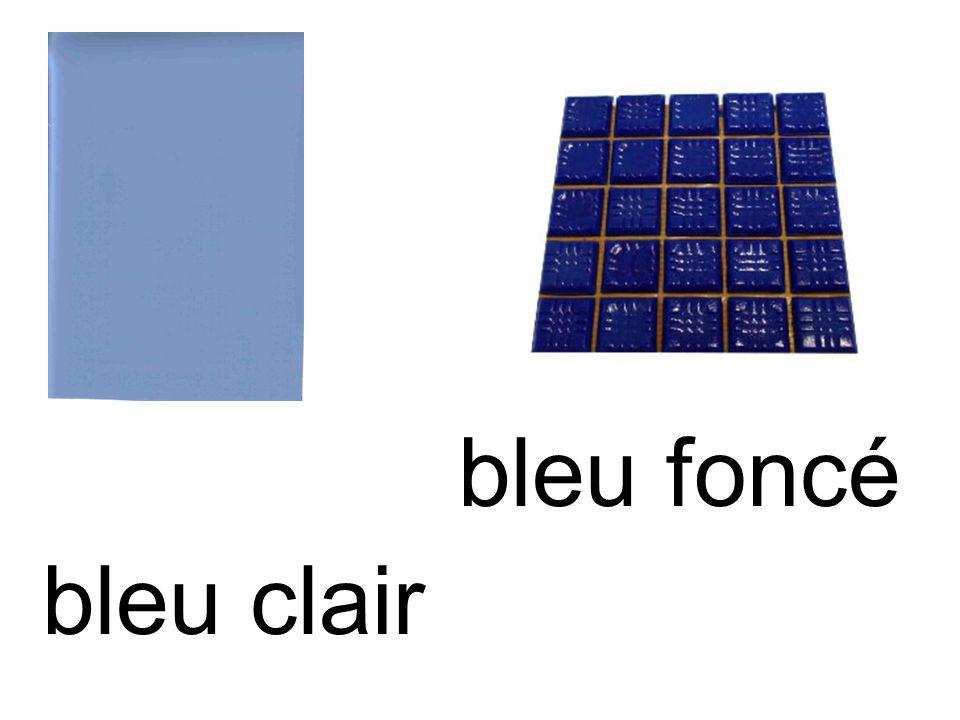 bleu clair bleu foncé