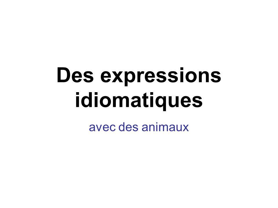 Des expressions idiomatiques avec des animaux