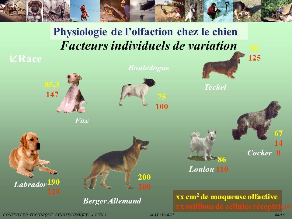 Physiologie de lolfaction chez le chien Facteurs individuels de variation Berger Allemand Bouledogue Labrador Fox Teckel Cocker Loulou 85,3 147 75 100