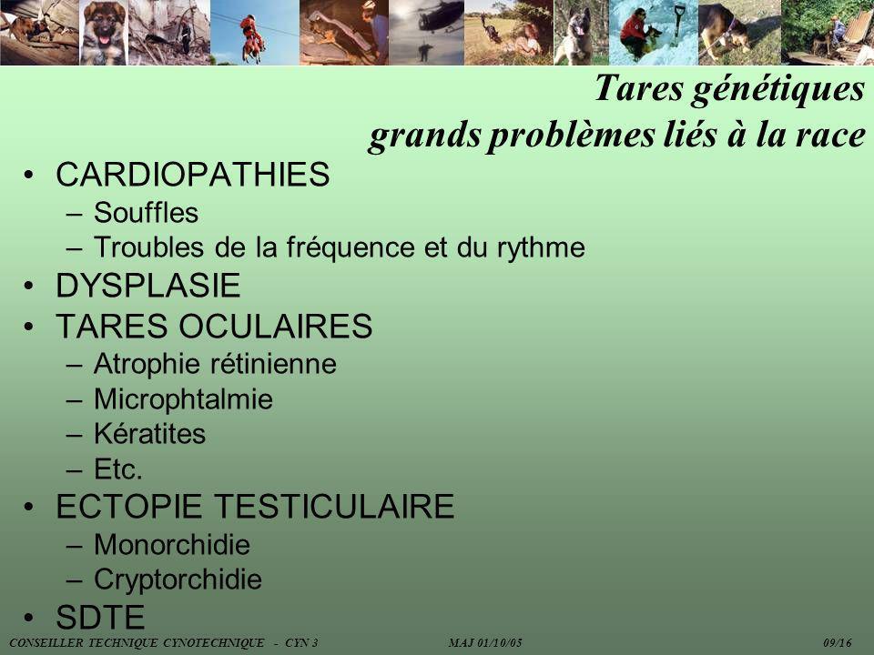 CARDIOPATHIES –Souffles –Troubles de la fréquence et du rythme DYSPLASIE TARES OCULAIRES –Atrophie rétinienne –Microphtalmie –Kératites –Etc. ECTOPIE