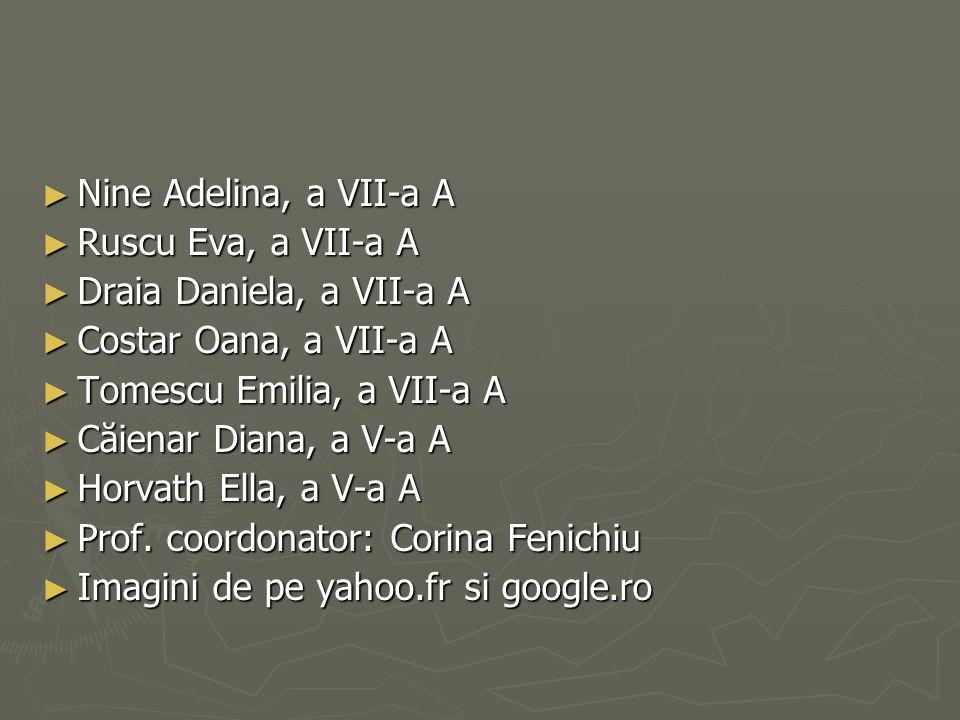 Nine Adelina, a VII-a A Nine Adelina, a VII-a A Ruscu Eva, a VII-a A Ruscu Eva, a VII-a A Draia Daniela, a VII-a A Draia Daniela, a VII-a A Costar Oan
