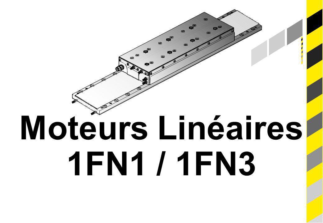 20 Moteurs Linéaires, Principes Version 06/2001 Siemens AG 1999. All rights reserved. © SIEMENS Moteurs Linéaires 1FN1 / 1FN3