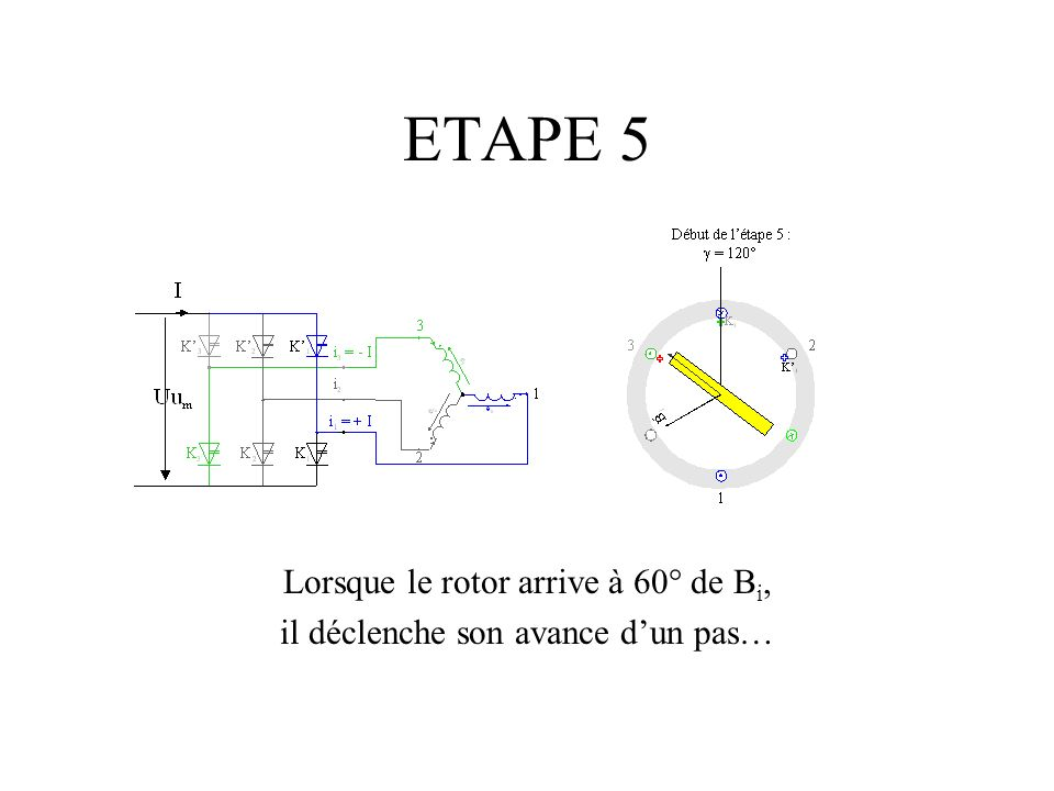 Lorsque le rotor arrive à 60° de B i, il déclenche son avance dun pas…