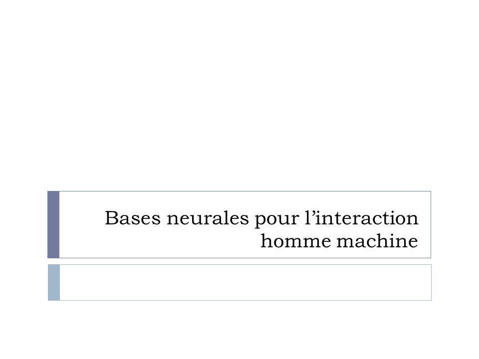 Bases neurales pour linteraction homme machine