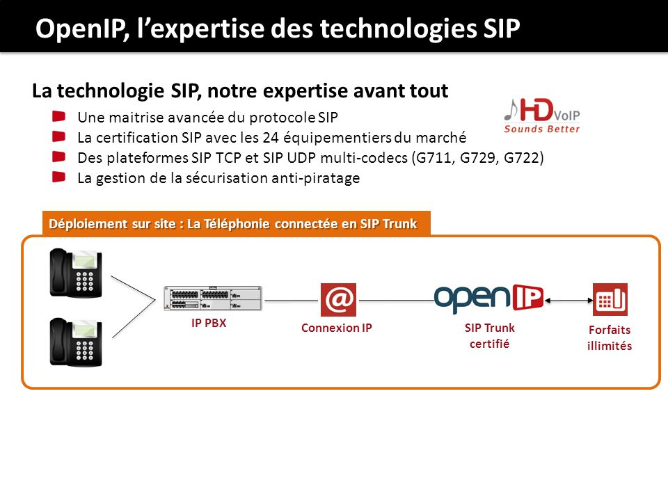 Une maitrise avancée du protocole SIP La certification SIP avec les 24 équipementiers du marché Des plateformes SIP TCP et SIP UDP multi-codecs (G711,