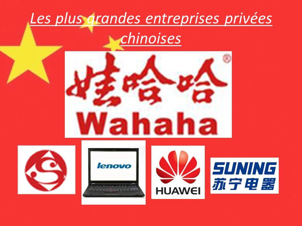 Les plus grandes entreprises privées chinoises