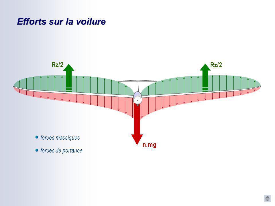 Efforts sur la voilure n.mg Rz/2 forces massiques forces de portance