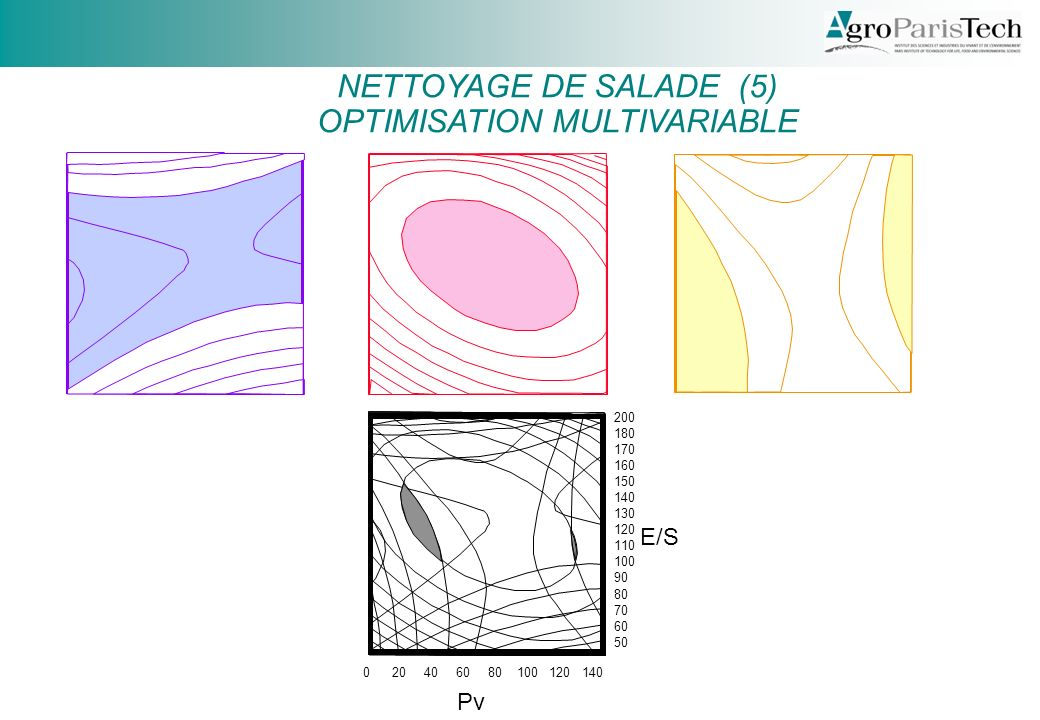 020406080100120140 50 60 70 80 90 100 110 120 130 140 150 160 170 180 200 Pv E/S NETTOYAGE DE SALADE (5) OPTIMISATION MULTIVARIABLE