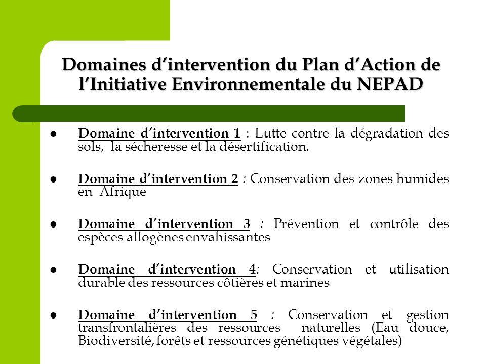 Domaines dintervention du Plan dAction de lInitiative Environnementale du NEPAD Domaine dintervention 1 : Lutte contre la dégradation des sols, la séc