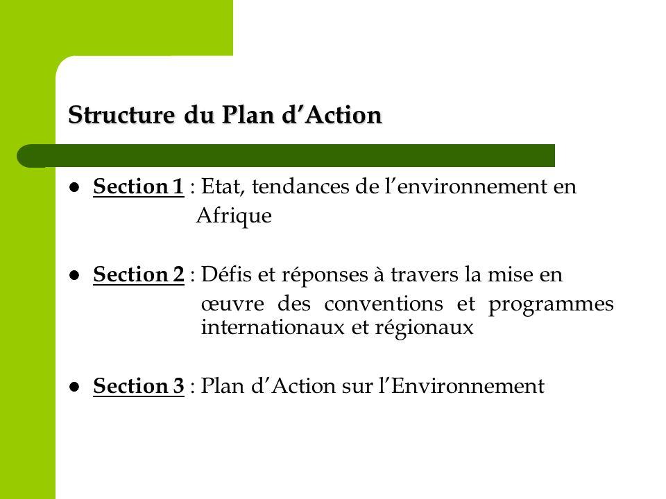 Structure du Plan dAction Section 1 : Etat, tendances de lenvironnement en Afrique Section 2 : Défis et réponses à travers la mise en œuvre des conven