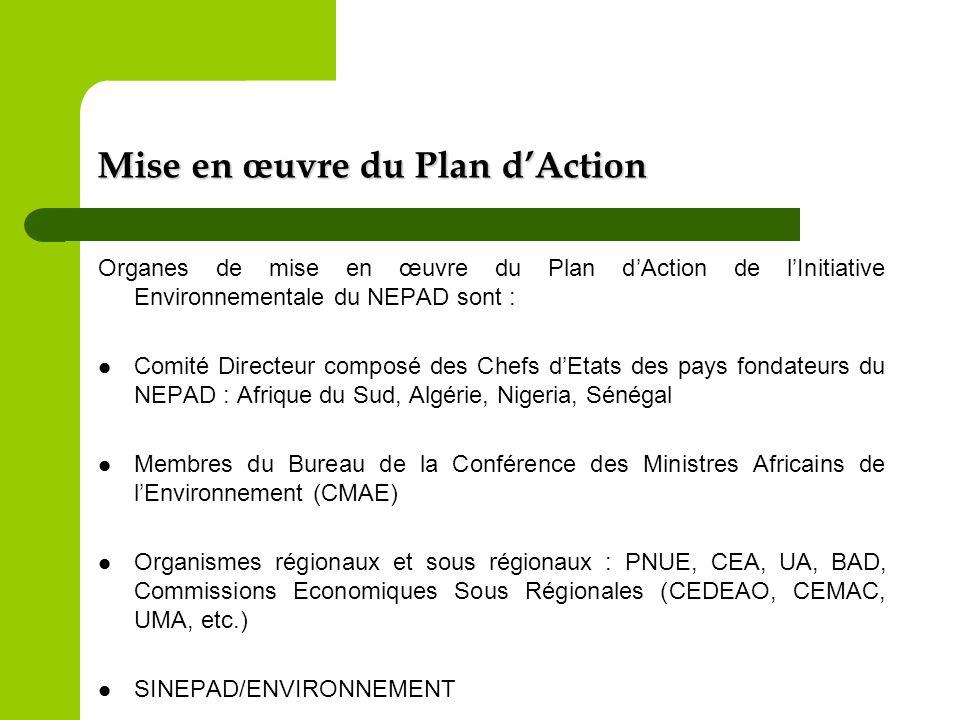 Mise en œuvre du Plan dAction Organes de mise en œuvre du Plan dAction de lInitiative Environnementale du NEPAD sont : Comité Directeur composé des Ch