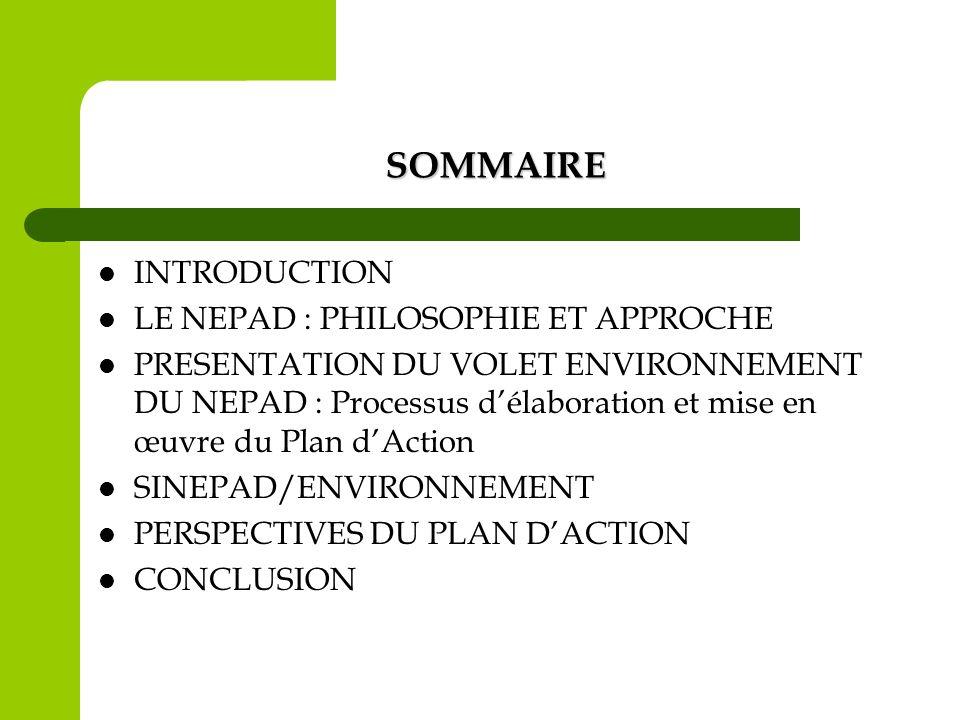 Structure du Plan dAction Section 1 : Etat, tendances de lenvironnement en Afrique Section 2 : Défis et réponses à travers la mise en œuvre des conventions et programmes internationaux et régionaux Section 3 : Plan dAction sur lEnvironnement