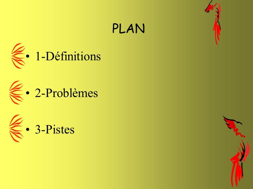 PLAN 1-Définitions 2-Problèmes 3-Pistes