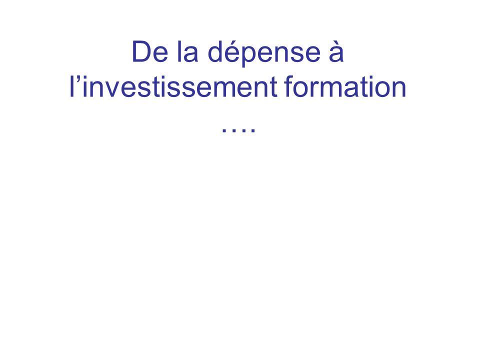 De la dépense à linvestissement formation ….