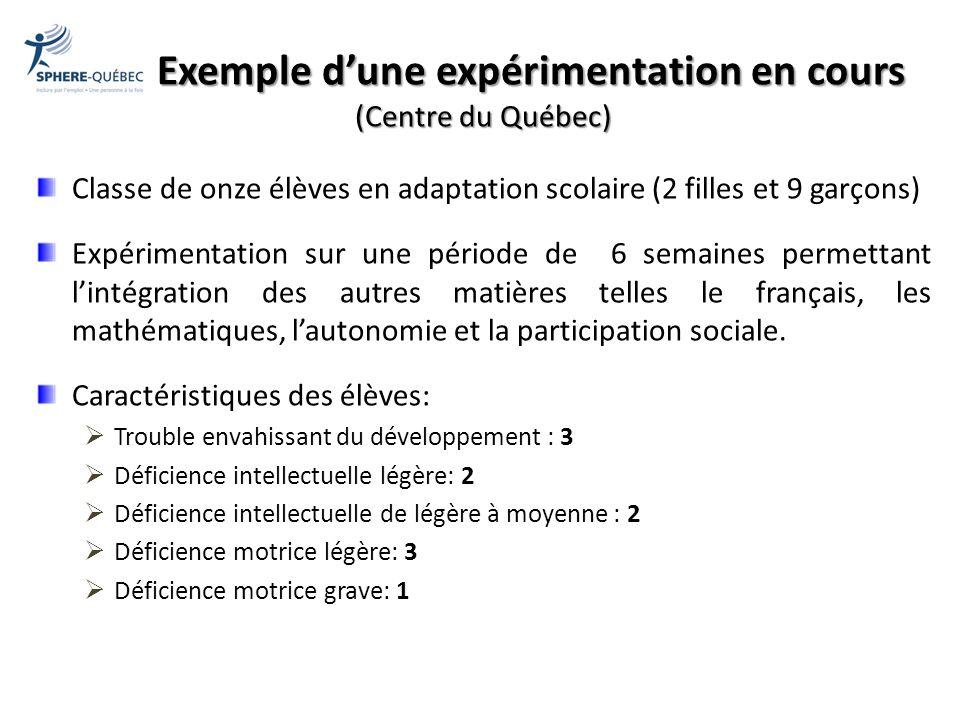 Exemple dune expérimentation en cours (Centre du Québec) Classe de onze élèves en adaptation scolaire (2 filles et 9 garçons) Expérimentation sur une