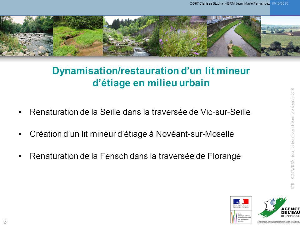 CG57 Clarisse Stzuka -AERM Jean-Marie Fernandez 19/10/2010 13 Renaturation de la Fensch dans la traversée de Florange STB – CG57/AERM - journée technique « hydromorphologie » 2010