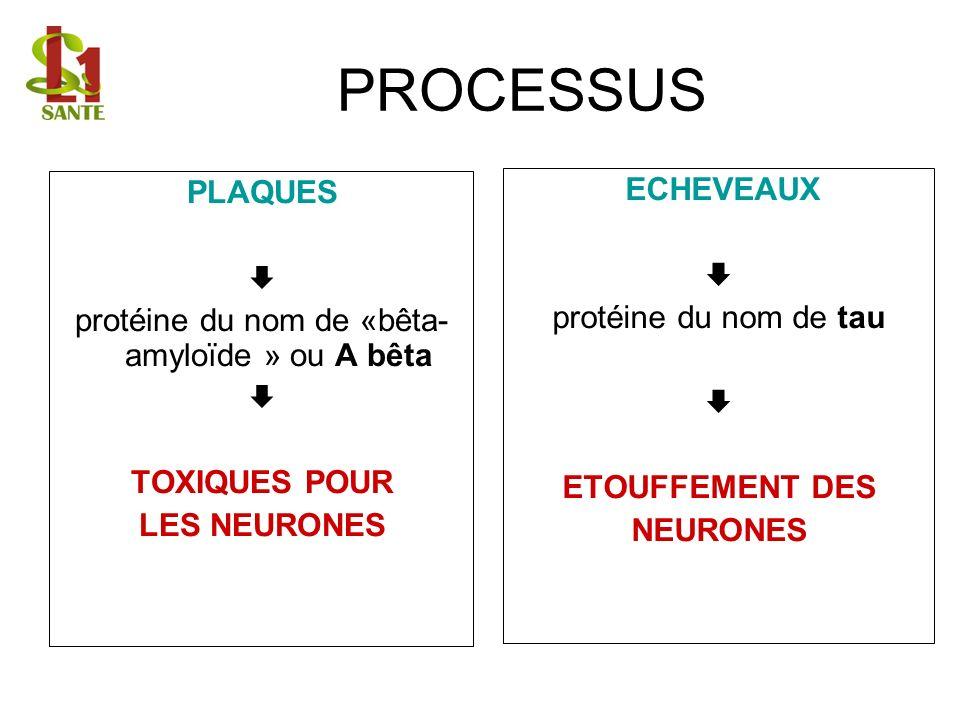 PROCESSUS ECHEVEAUX protéine du nom de tau ETOUFFEMENT DES NEURONES PLAQUES protéine du nom de «bêta- amyloïde » ou A bêta TOXIQUES POUR LES NEURONES