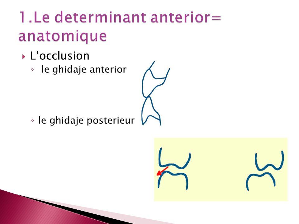 Mastication -les caracteristiques des cycles masticatoires 1.incision 2.placement zone Pm.