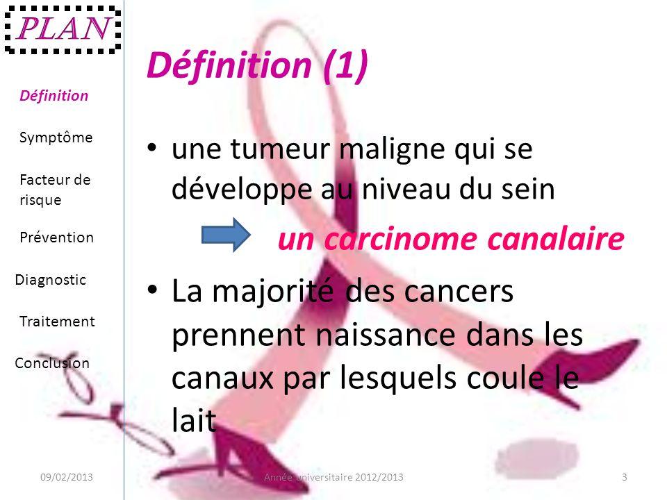Définition (1) une tumeur maligne qui se développe au niveau du sein un carcinome canalaire La majorité des cancers prennent naissance dans les canaux