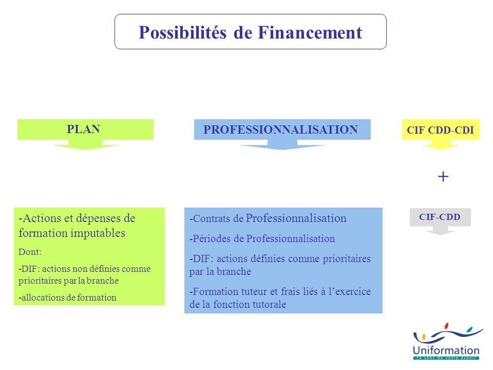 CIF CDD-CDI CIF-CDD PLAN PROFESSIONNALISATION -Actions et dépenses de formation imputables Dont: -DIF: actions non définies comme prioritaires par la