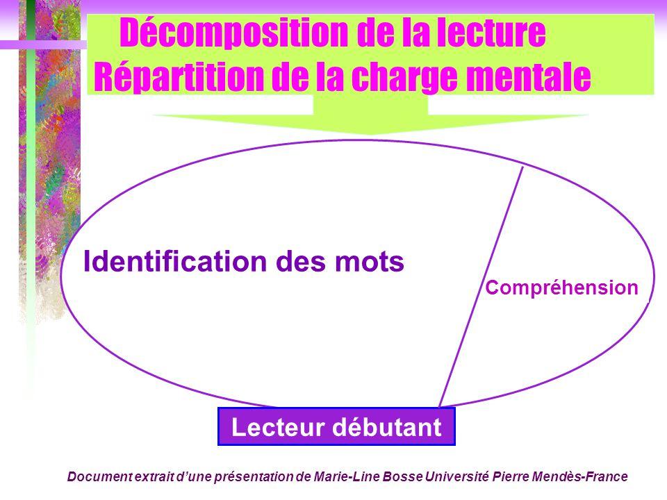 Décomposition de la lecture Répartition de la charge mentale Compréhension Identification des mots Lecteur débutant Document extrait dune présentation