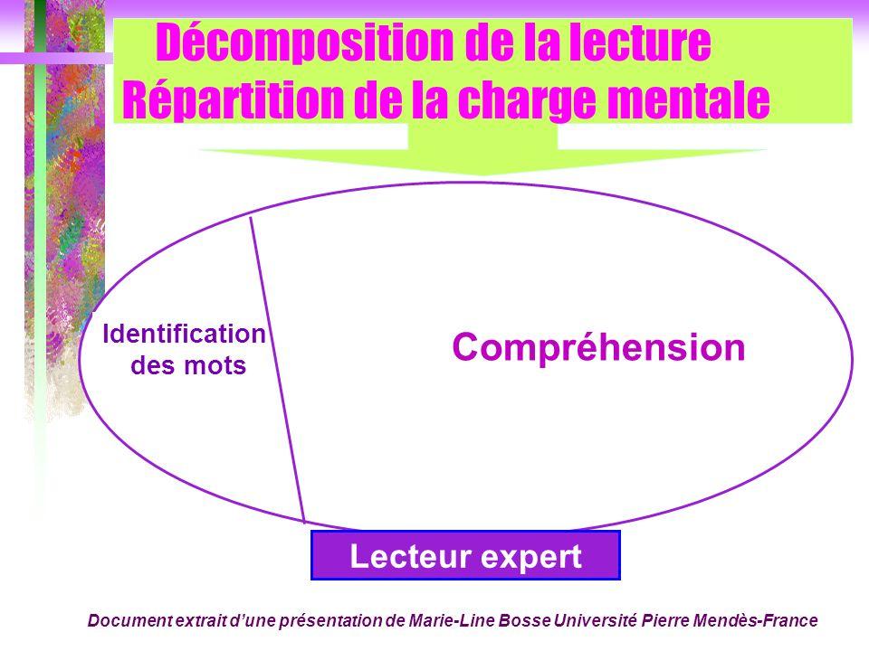 Décomposition de la lecture Répartition de la charge mentale Compréhension Identification des mots Lecteur expert Document extrait dune présentation d