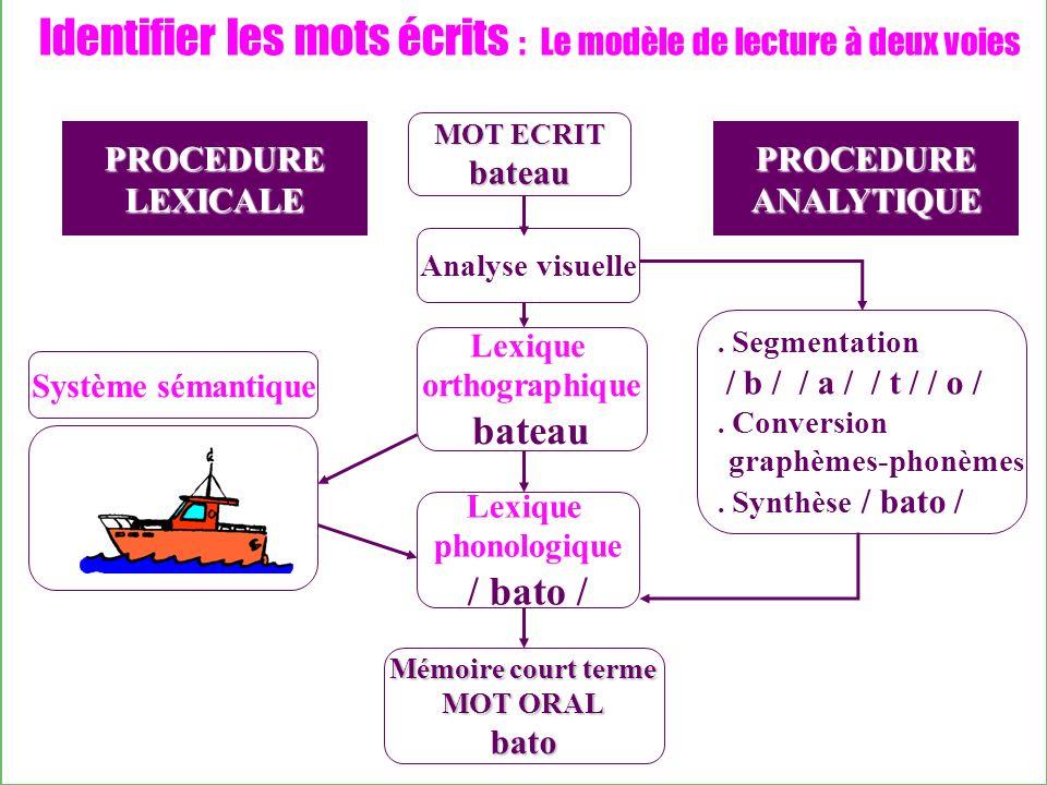 Identifier les mots écrits : Le modèle de lecture à deux voies Analyse visuelle Lexique orthographique bateau Lexique phonologique / bato / PROCEDURE ANALYTIQUE.