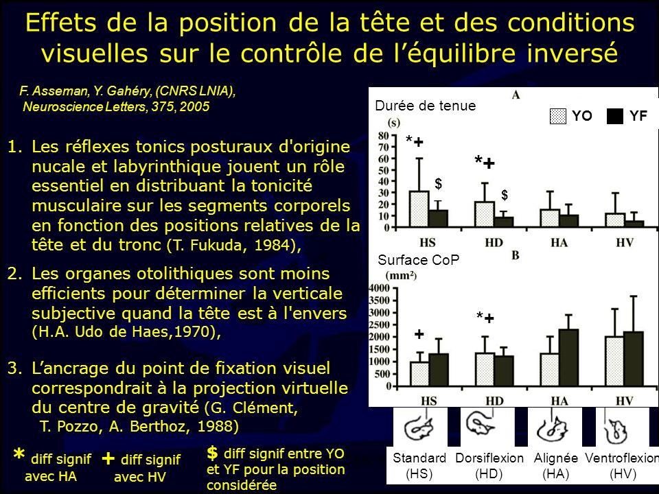J-F. Stein, LMAP, DSS, INSEP 13 Effets de la position de la tête et des conditions visuelles sur le contrôle de léquilibre inversé Standard (HS) Dorsi