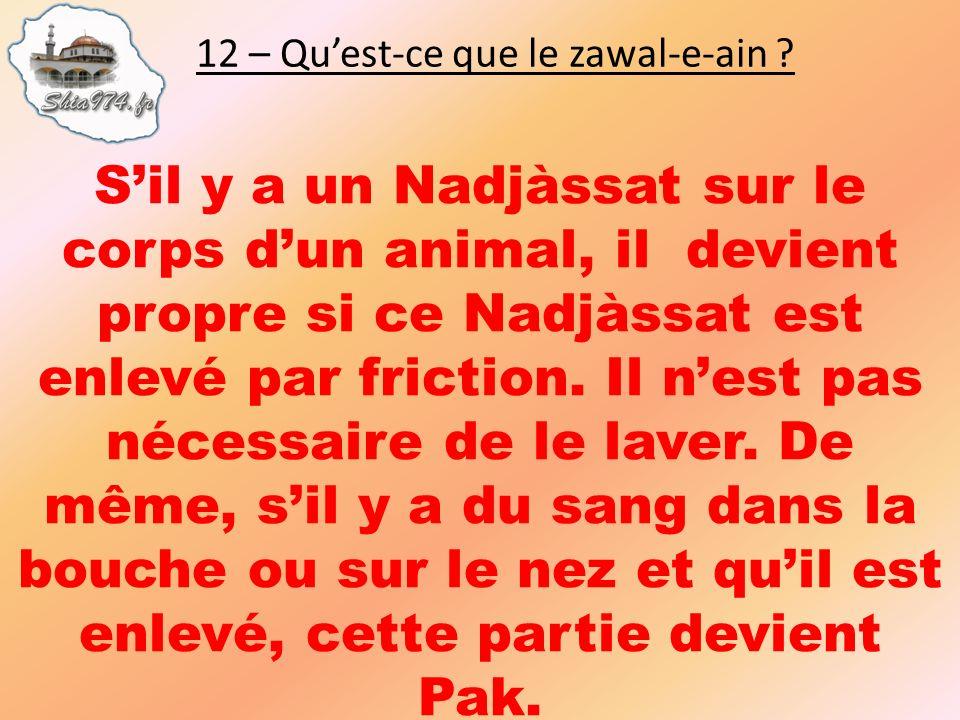 Sil y a un Nadjàssat sur le corps dun animal, il devient propre si ce Nadjàssat est enlevé par friction. Il nest pas nécessaire de le laver. De même,