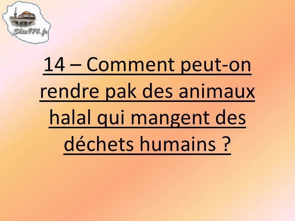 14 – Comment peut-on rendre pak des animaux halal qui mangent des déchets humains ?