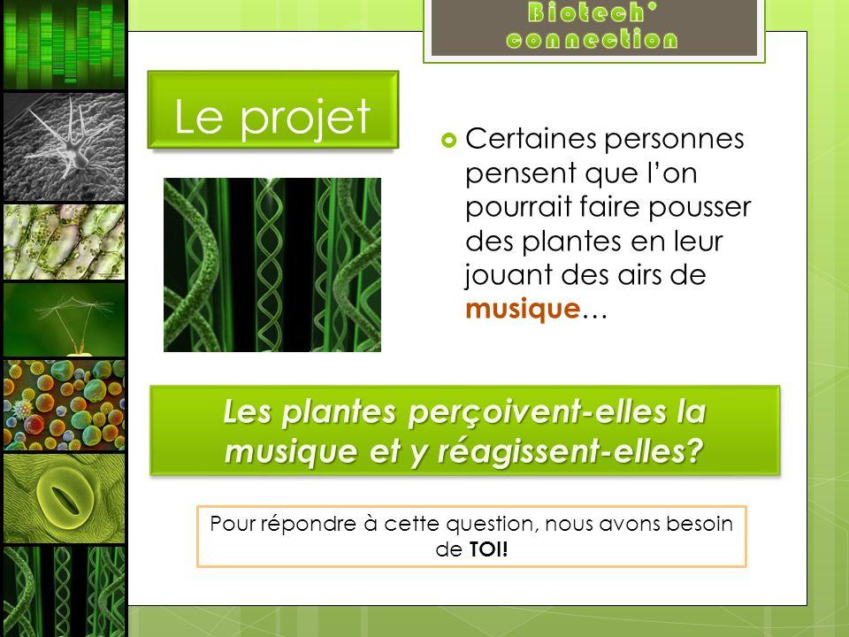 Le projet Certaines personnes pensent que lon pourrait faire pousser des plantes en leur jouant des airs de musique … Les plantes perçoivent-elles la